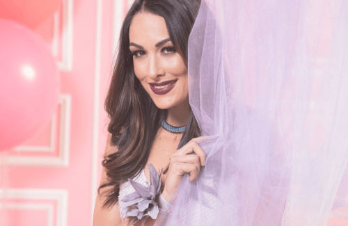 Brie Bella Most beautiful divas from WWE