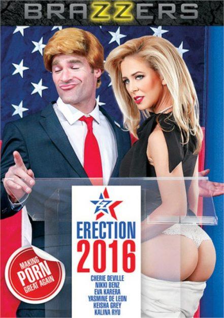ZZ Erection 2016 Best Porn Movies of 2017