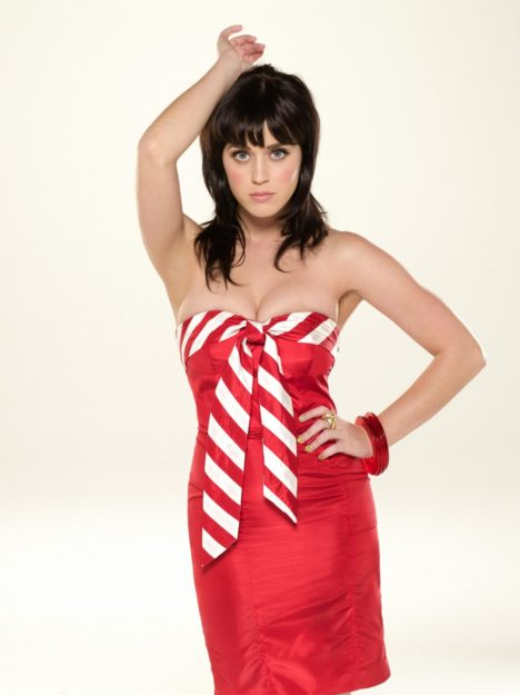 Katy Perry Hot Pic No 1 (13)