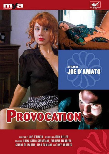 Provocation Hindi Dubbed Adult Hollywood Movies