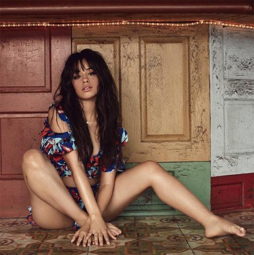 Camila Cabello Hot and half nude pic 1