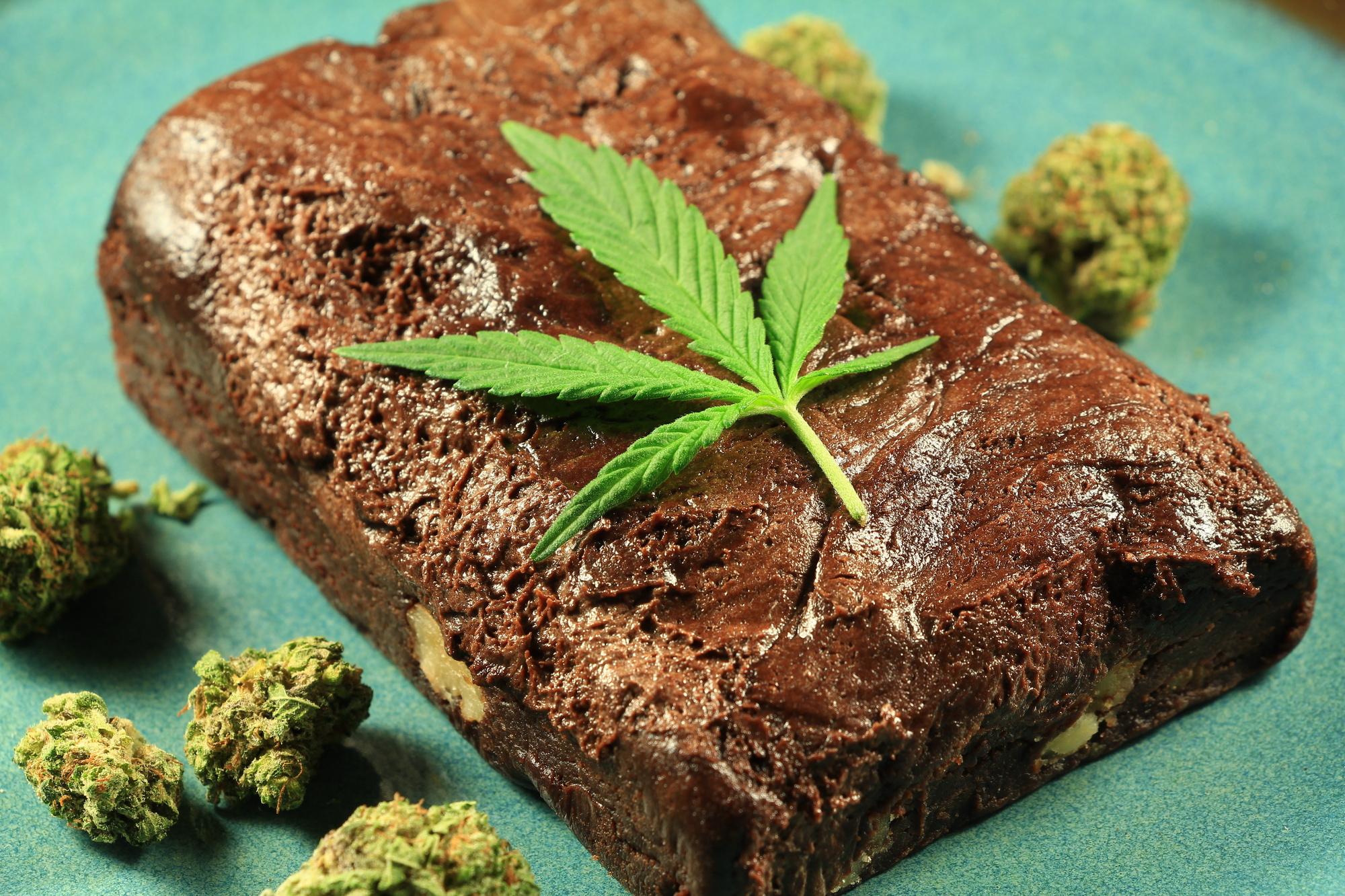 Фото конопля рецепт с марихуаны кустов