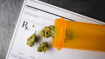 medical marijuana success stories