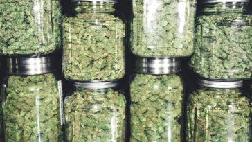 recreational dispensary