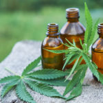 cannabis oil and leaves