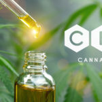 cbd oil with dropper and plants in background