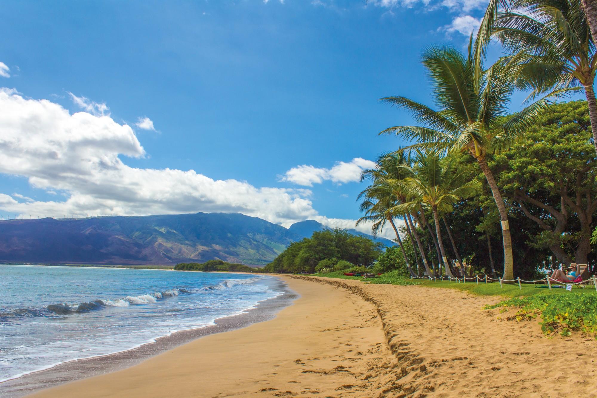 Hawaii Beach Shore